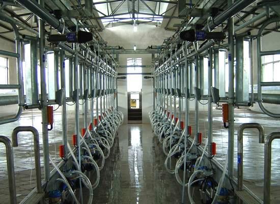 Janshen Shanghai Bright Dairy
