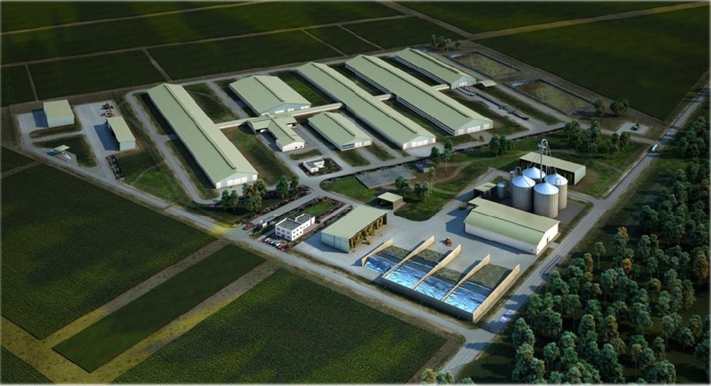 Azerbaijan dairy farm